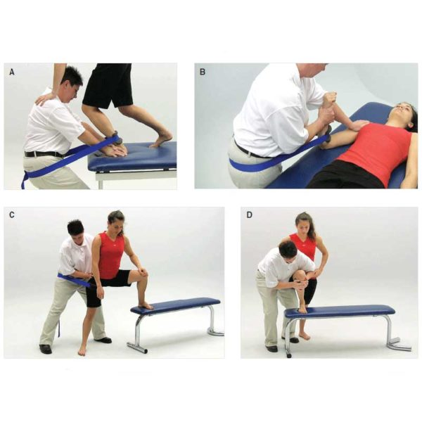 Manual Therapy Courses | Sports Therapy Scoland