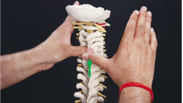 Nags and snags spinal mobilisations
